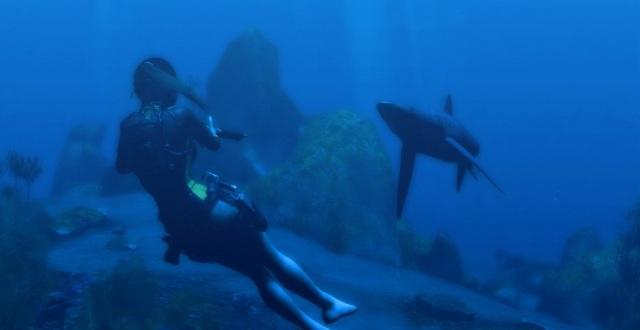 Underwater shark fights!